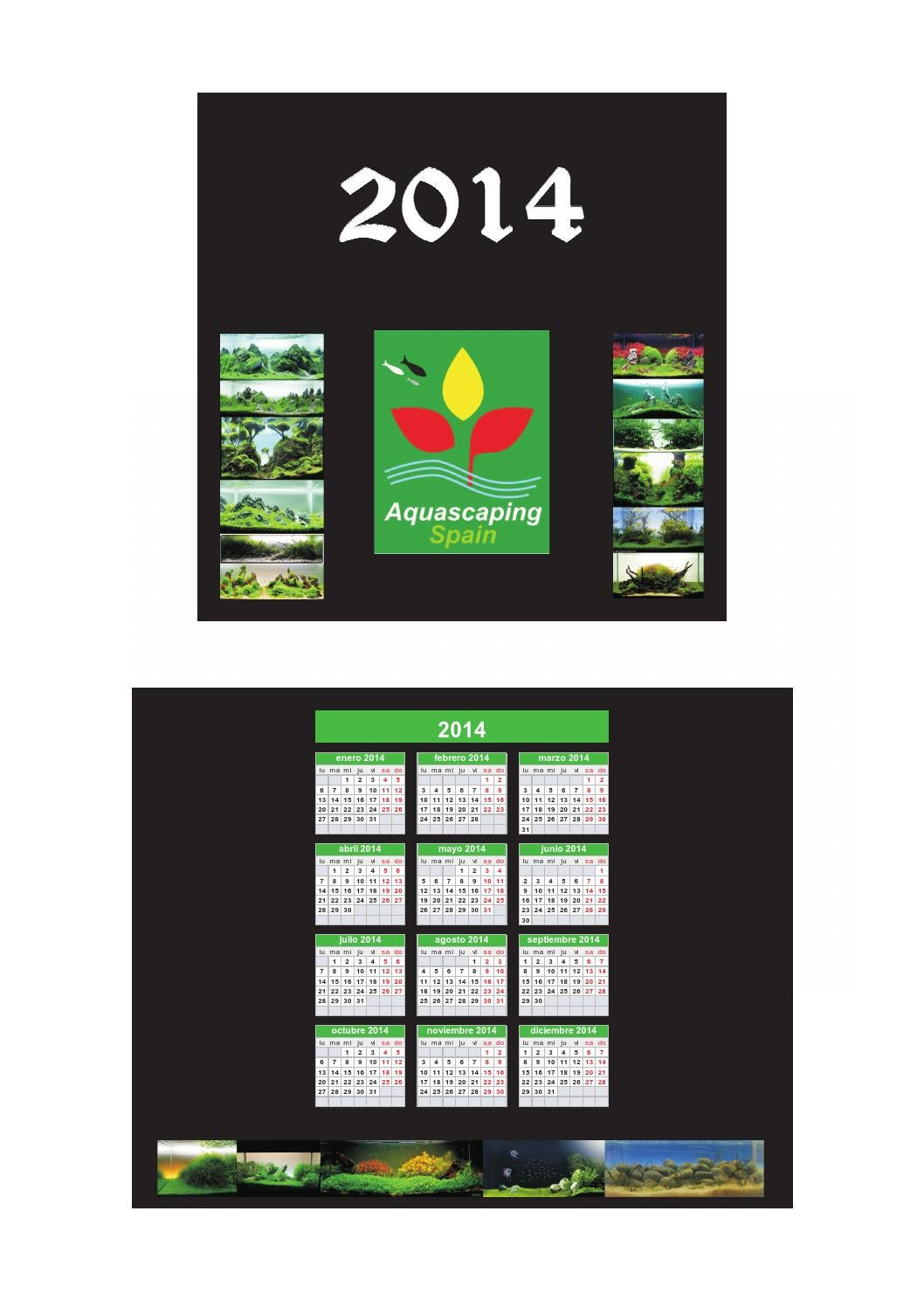 Cd calendario aquascaping spain 2014 by acuarios grifon issuu - Aquascape espana ...
