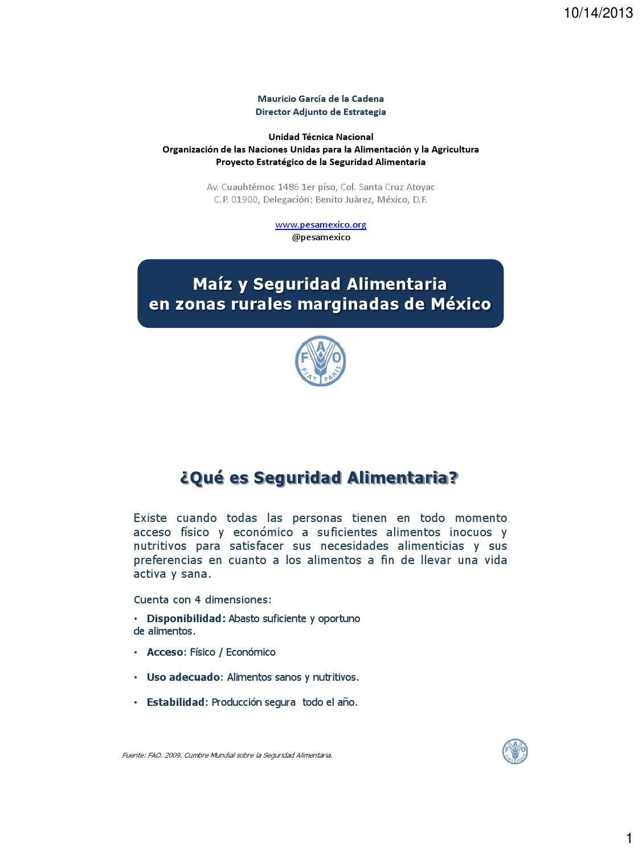 Seguridad en mexico 2013 pdf