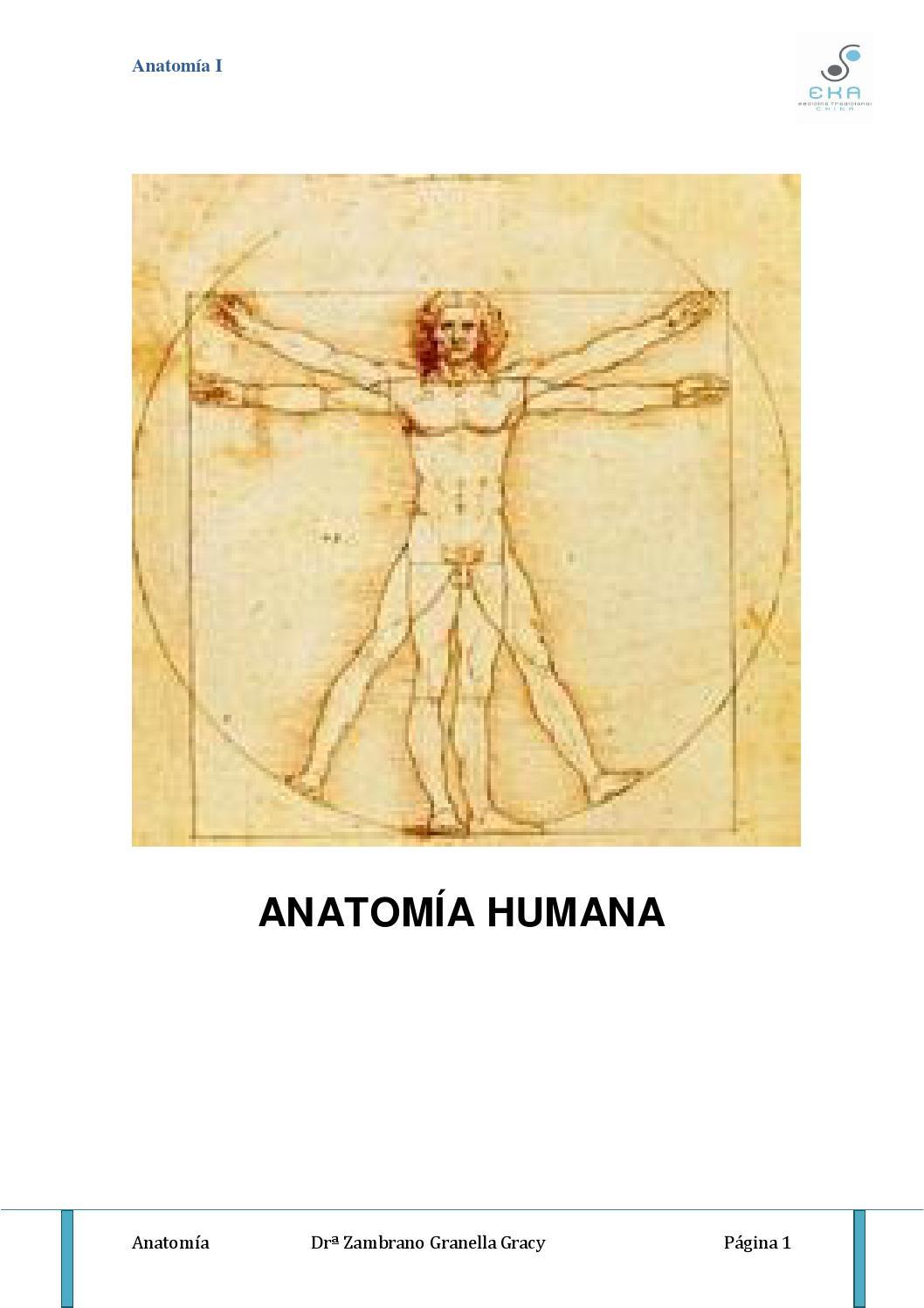 Anatomia de gracy by Eka Terapias - issuu