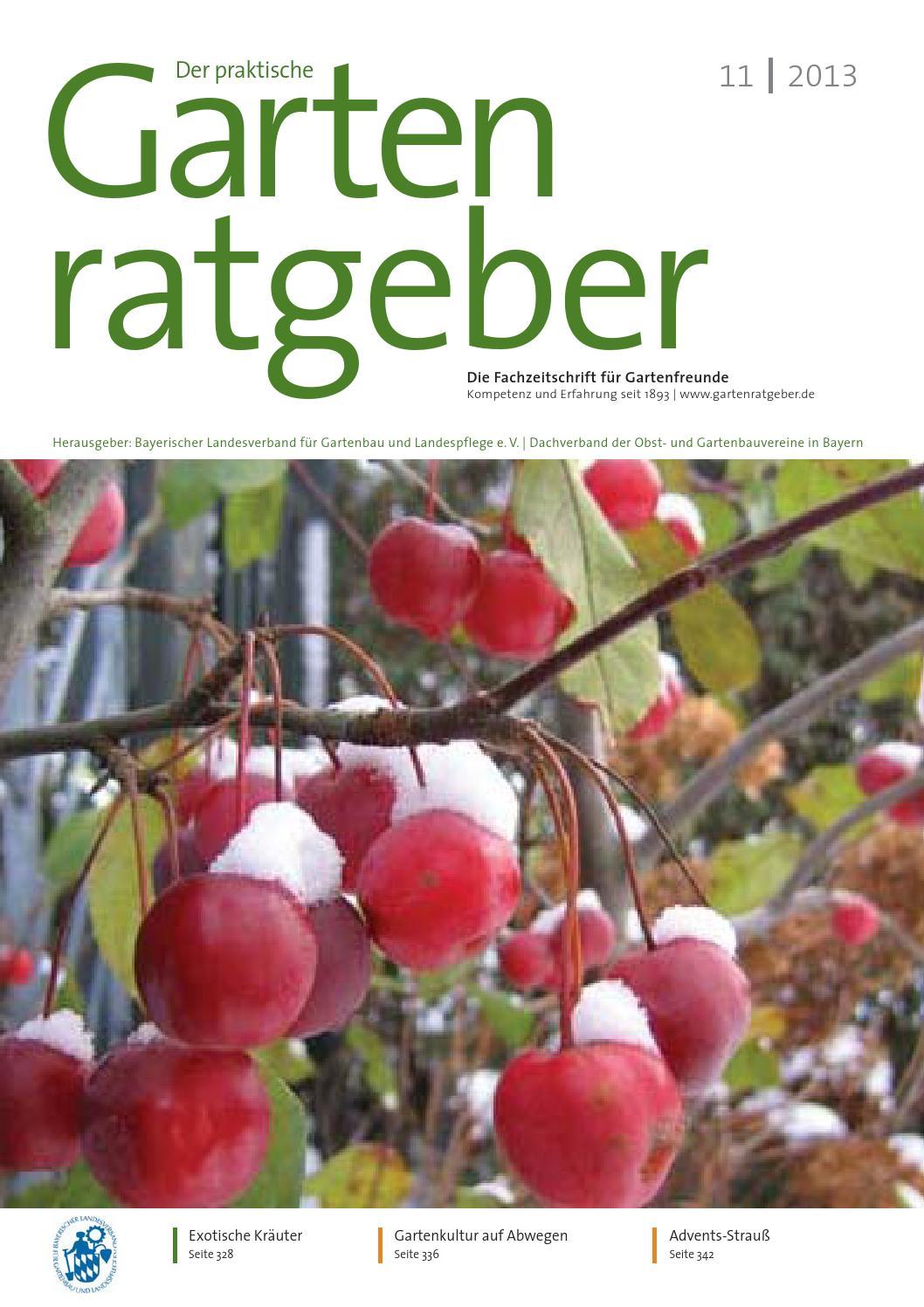 Gartenratgeber 11 2013 by gartenratgeber - issuu