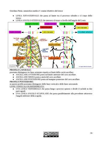 Semeiotica medica giordano perin by tslb issuu for Angolo del louis