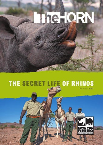 6d421d0de The Horn Autumn 2013 - The Secret Life of Rhinos by Save the Rhino ...