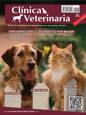 Clínica Veterinaria n. 106 by Revista Clínica Veterinária - issuu