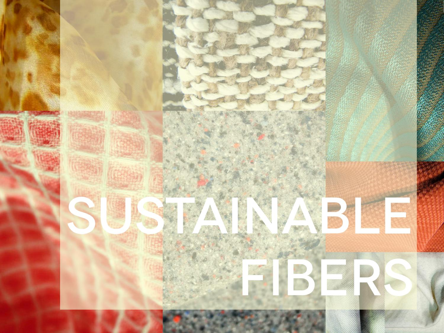 the search for sustainable fibre fabric alternatives Today's sustainable fibre will be sisal sisal is a fibre that is native to mexico derived from the agave plant.