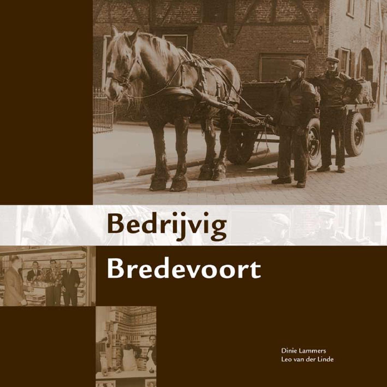 Inkijkexemplaar Bedrijvig Bredevoort By Achterhoekseboeken