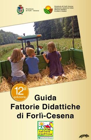 Bagno Moderno Di Pedrelli Filippo.Guida Fattorie Didattiche Di Forli Cesena 12 Edizione By Filippo