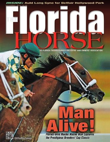 The Florida Horse Magazine December 2013 By Florida Equine