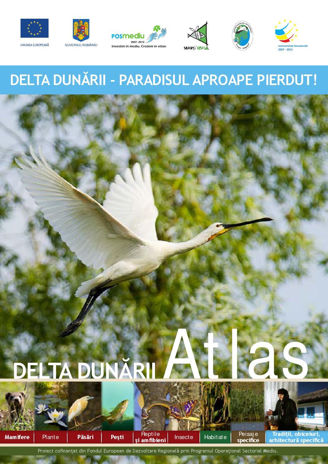 Atlas Delta Dunarii by Delta Dunarii - issuu