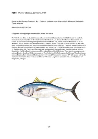 Fische der Kanaren by Otto Wieghardt - issuu