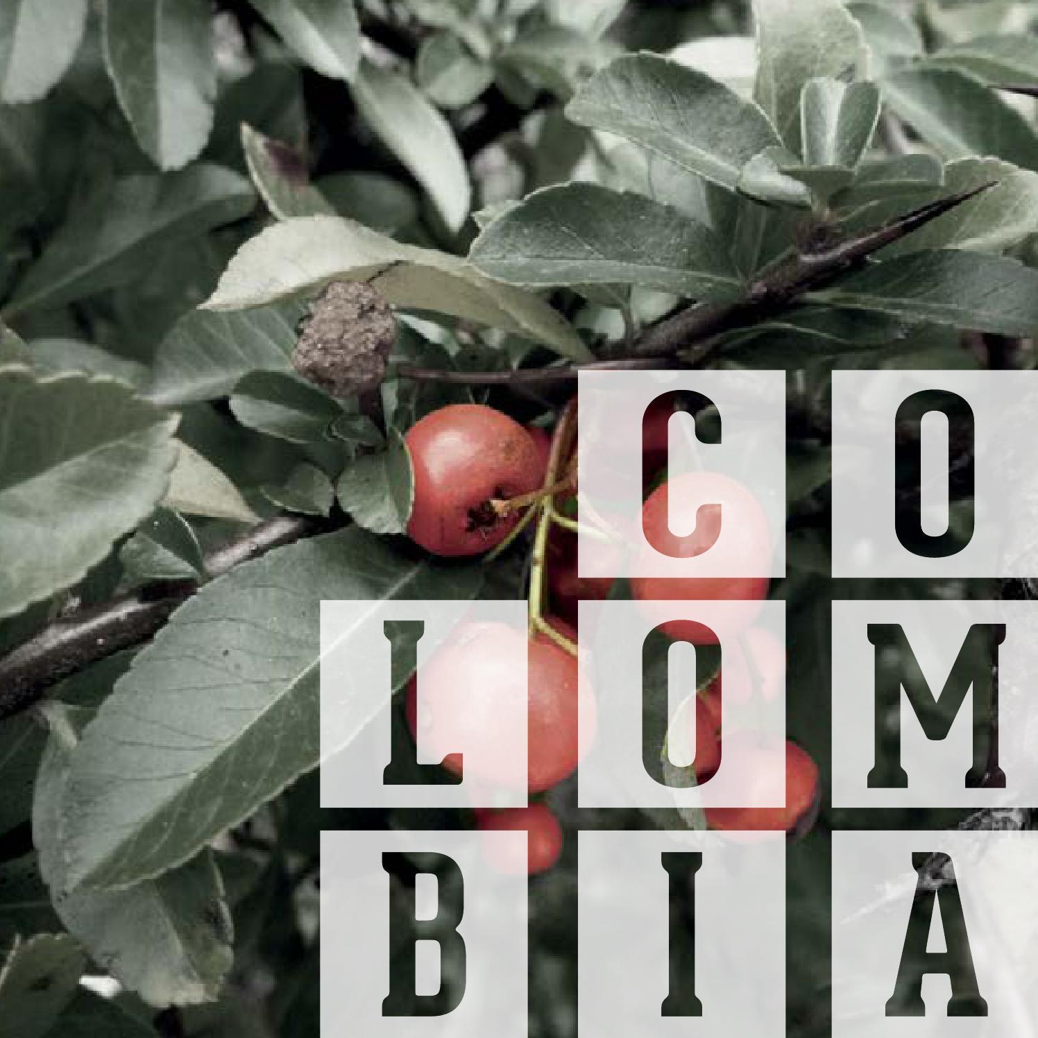 Libro Final Cocina Demo by Mariana Aranzazu Cujar - issuu