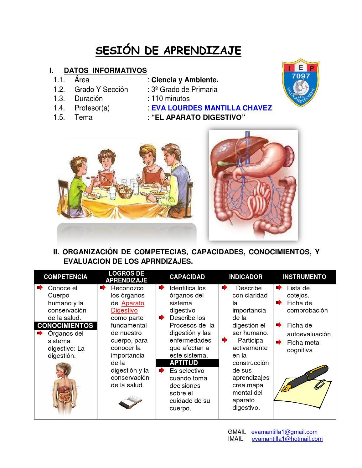 SESION DE APRENDIZAJE EL SISTEMA DIGESTIVO Prof. Eva Mantilla Ch. by ...