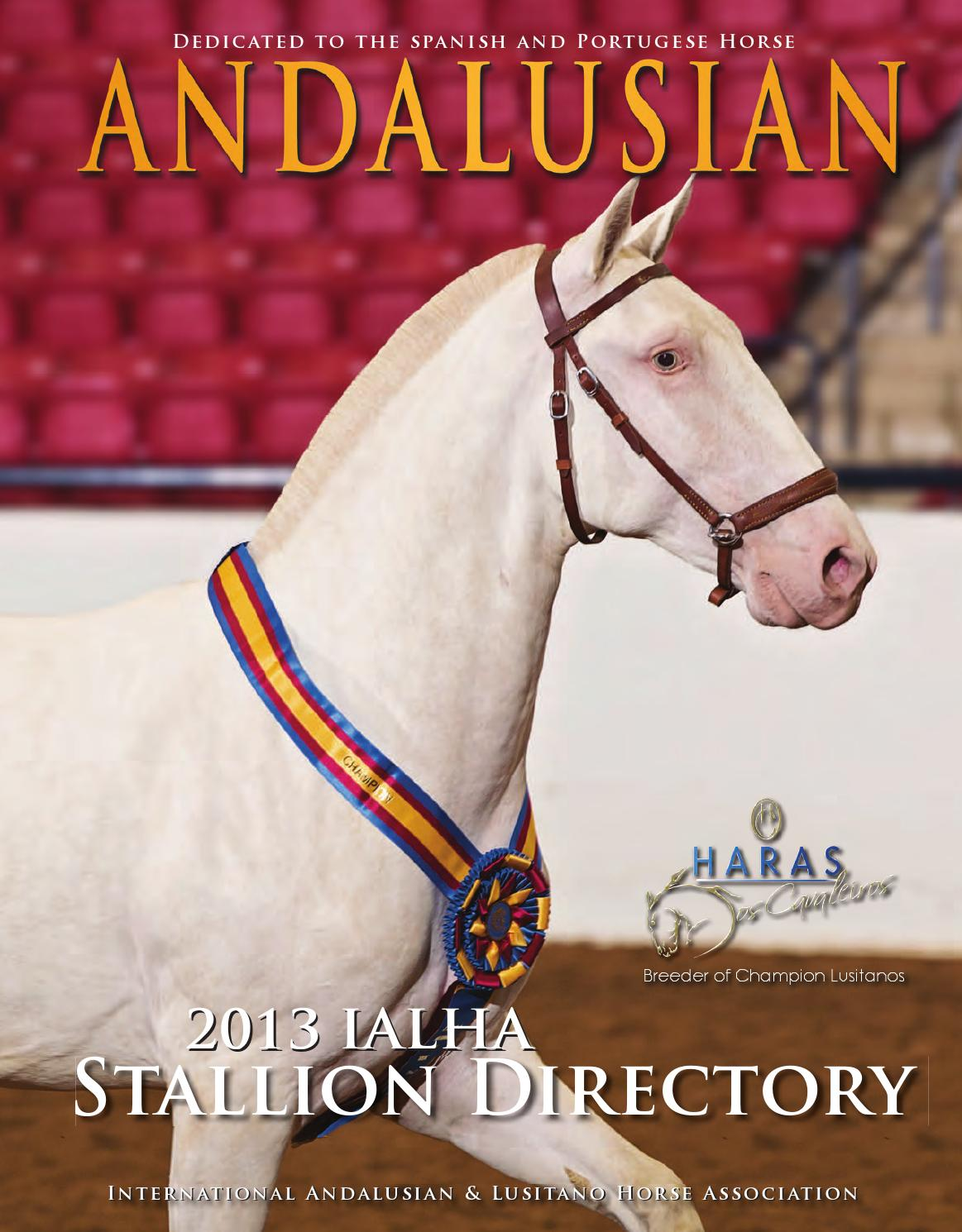 Andalusian Magazine Stallion Directory 2013 By Hrcs Issuu