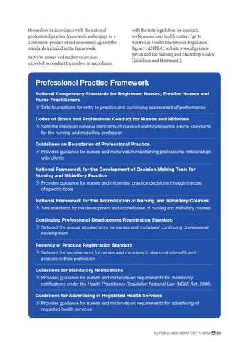 what is the process for developing nursing standards of practice