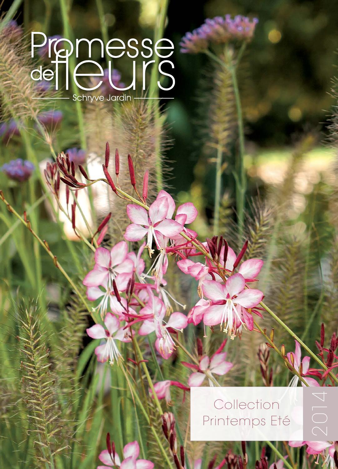 Catalogue promesse de fleurs pe 2014 by promesse de fleurs for Promesse de fleurs