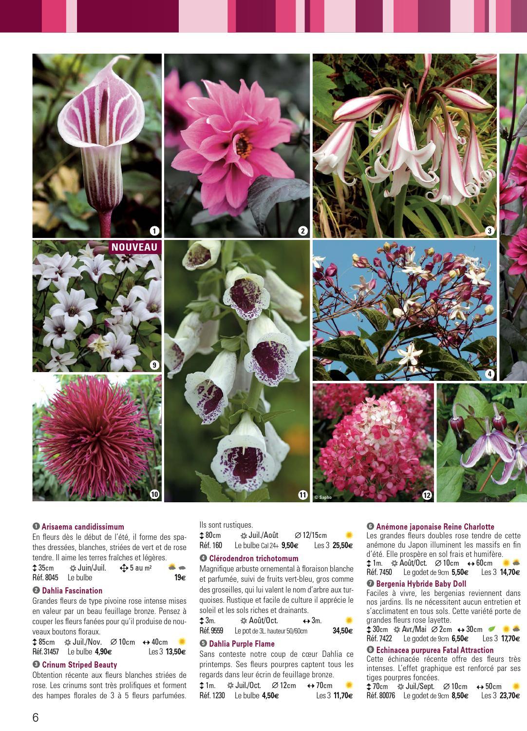 Catalogue Promesse de fleurs PE 2014 by Promesse de fleurs - Issuu