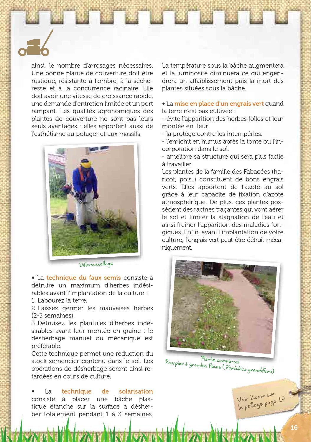Couvre Sol Croissance Rapide trucs et astuces du jardin (fredon972, ode, 2012)
