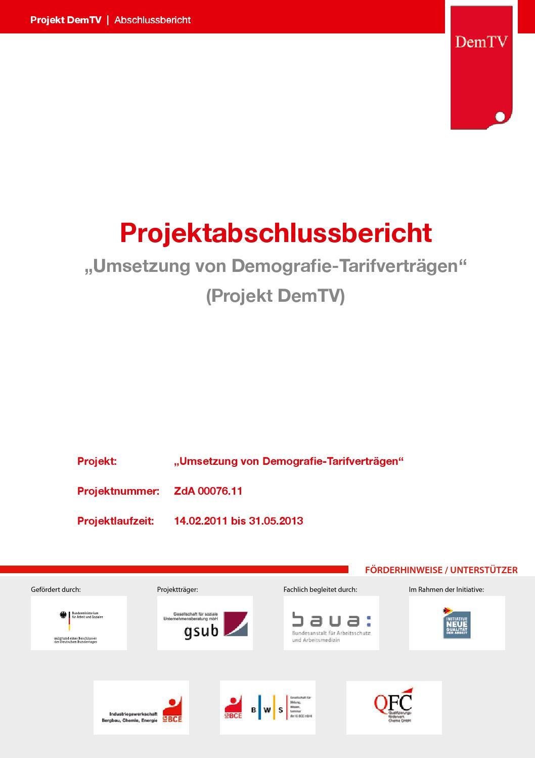 Demtv Schlussbericht 2013 by Qualifizierungsförderwerk Chemie GmbH ...