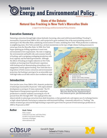 IEEP State of Debate: Natural Gas Fracking in New York's