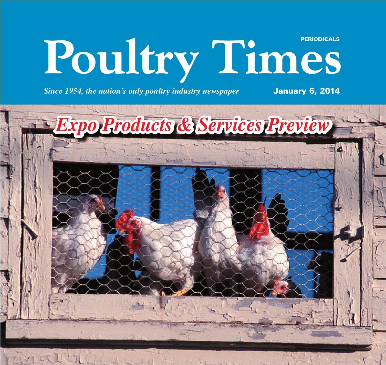 Ventilation system poultry breeder house north ireland opticon agri - Ventilation System Poultry Breeder House North Ireland Opticon Agri 3