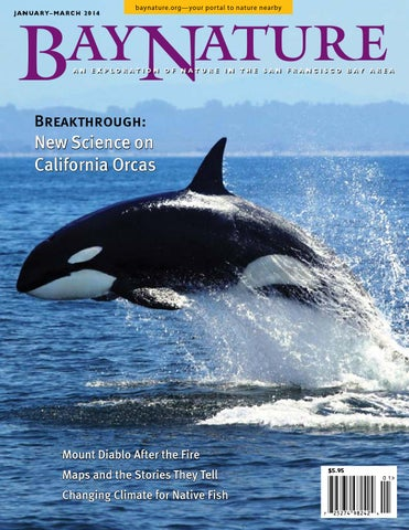 Bay Nature January March 2014 By Institute