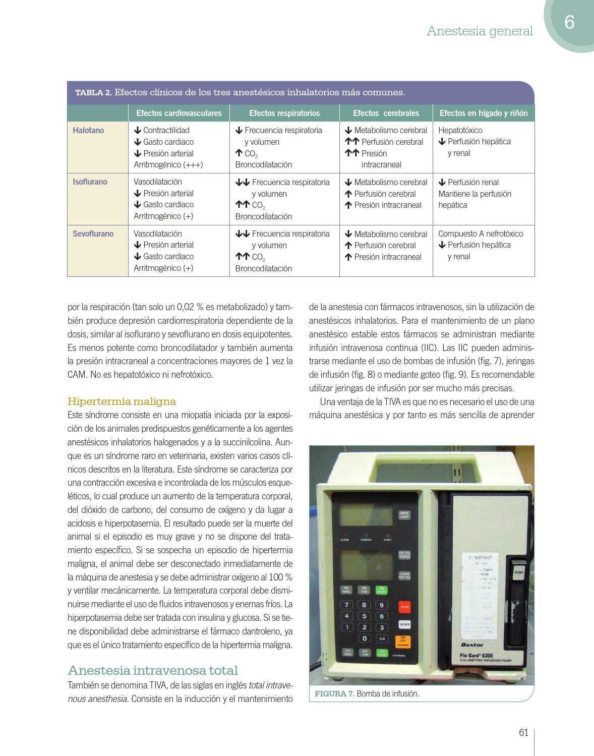 manual de anestesia y analgesia de pequeños animales pdf