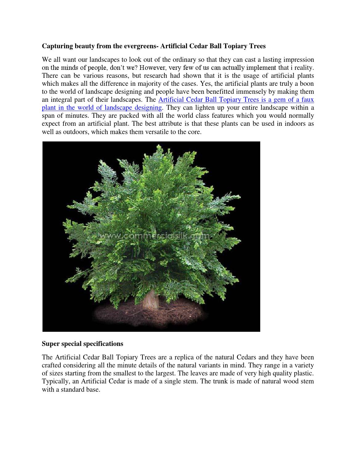 Capturing Beauty From The Evergreens Artificial Cedar Ball Topiary Tree By Megan Vaughn Issuu