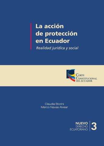 La Accion De Proteccion En Ecuador By Senker Arevalo Issuu