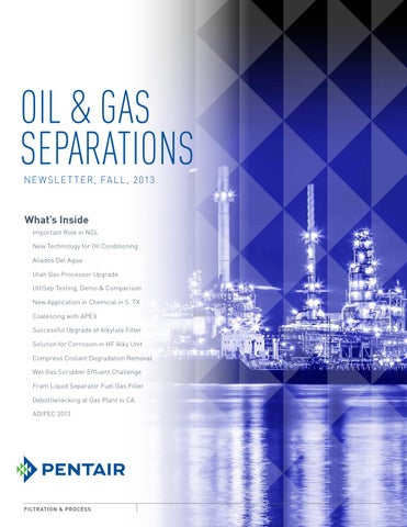 Pentair Oil Amp Gas Separations Newsletter Fall 2013 By