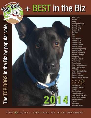 Spot magazine 2014 top dog directory by spot magazine issuu the top dogs in the biz by popular vote solutioingenieria Gallery
