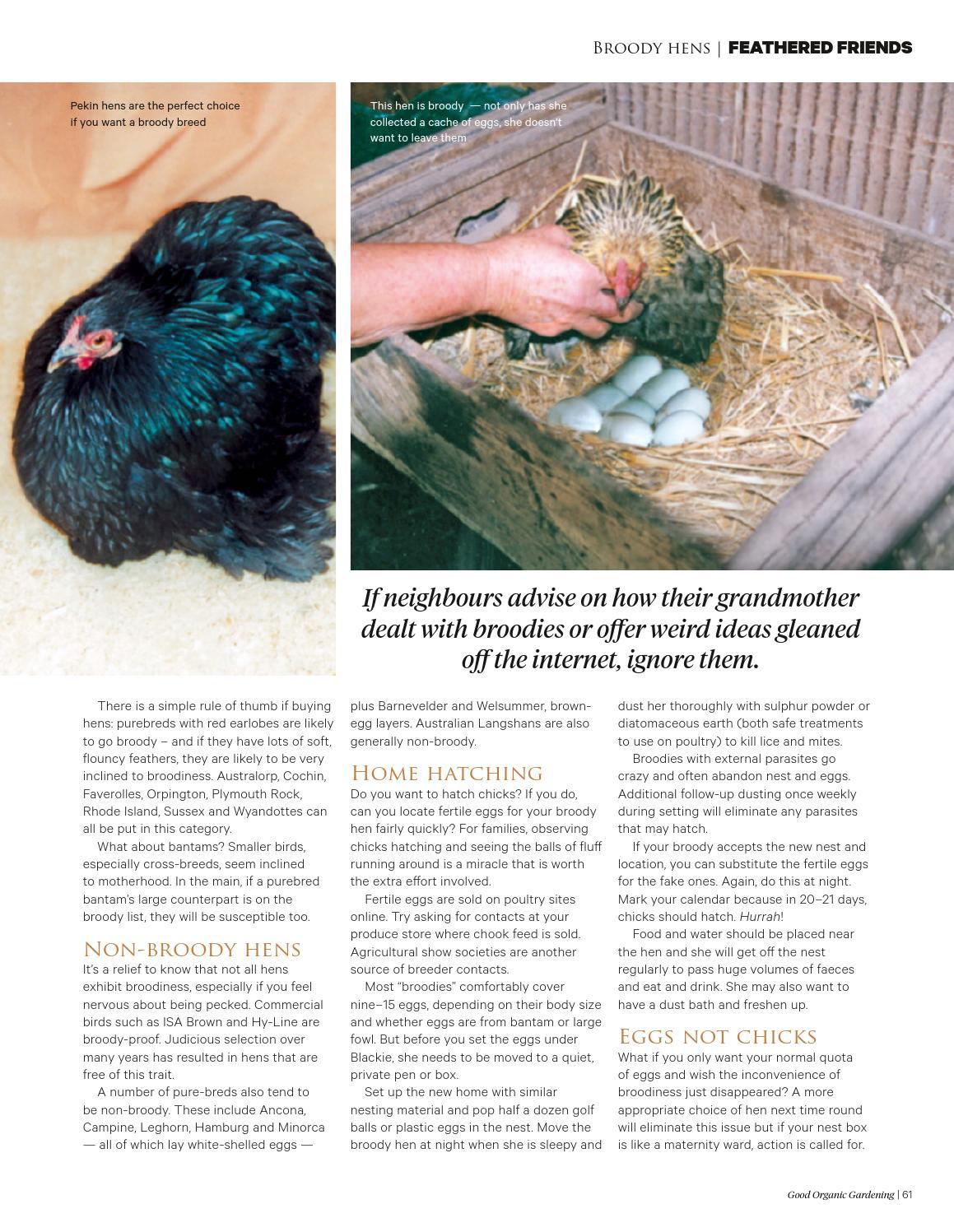 Good Organic Gardening Issue 4 5 By Good Organic Gardening