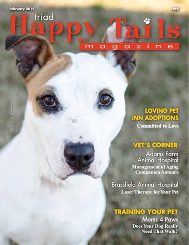 41e270d9259761 Triad Happy Tails Feb.14 by Beverly Beck   Associates - issuu