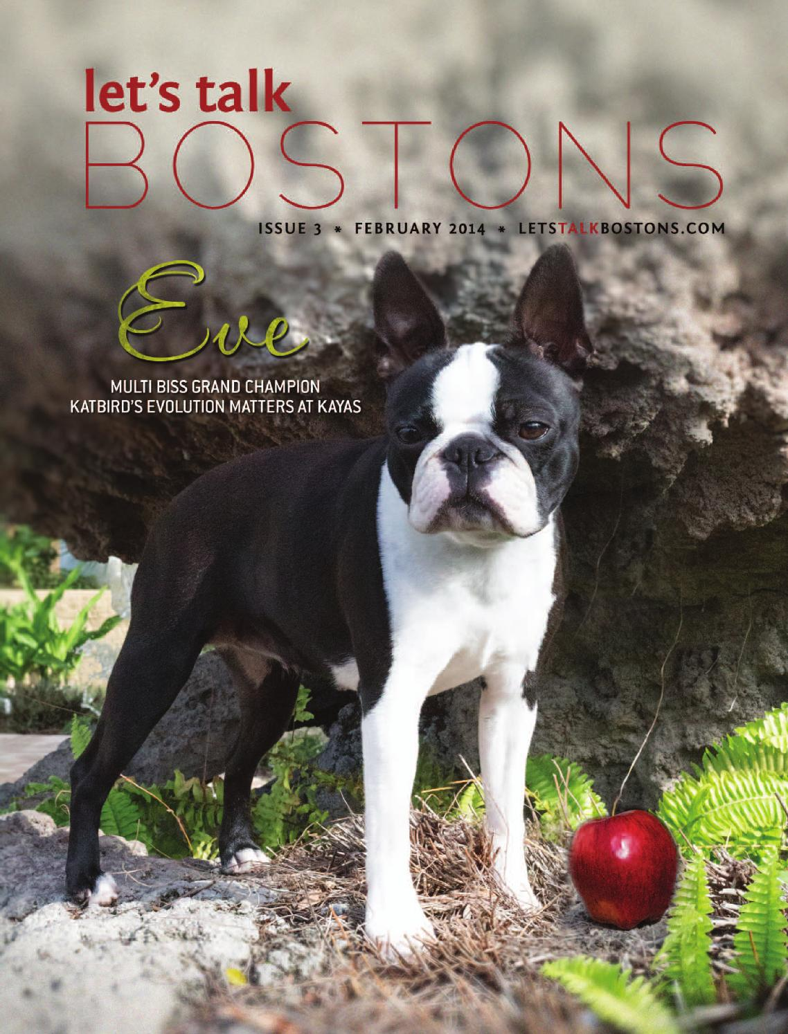 Let\'s Talk Bostons Magazine - Issue 3 - February 2014 by Let\'s Talk ...