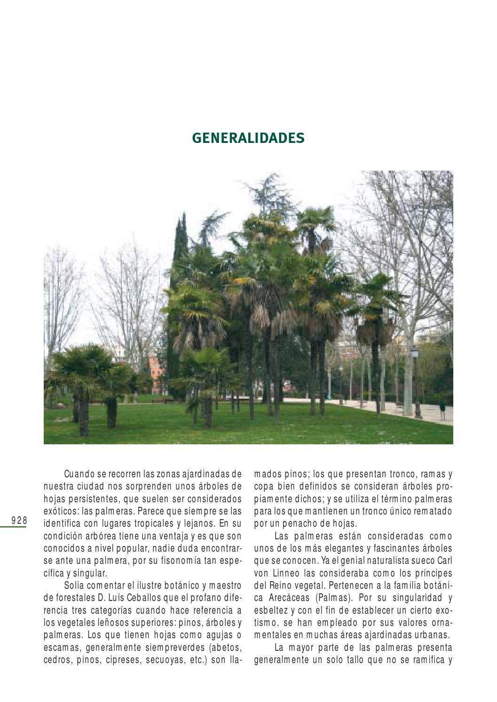 Arbolesmad palmer by Parques e Xardíns - issuu