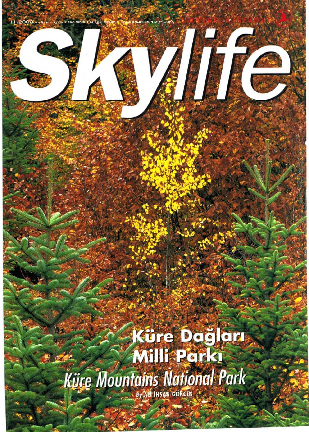 Sonbaharda Doğa: Bir dizi inanılmaz metamorfoz