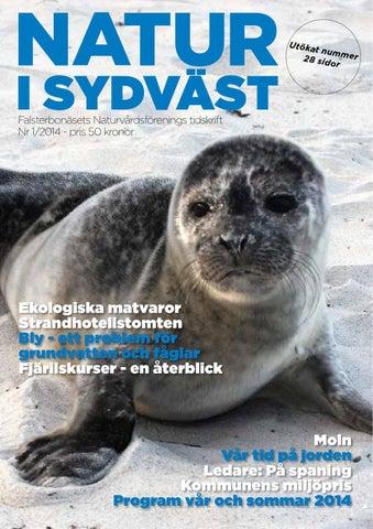 Ölandsmagazinet Sommar 2014 by Ölandsmagazinet - issuu 03d5fd3857762