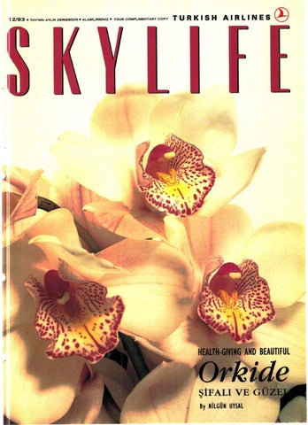9297adabdf4c9 2005 11 by Skylife Magazine - issuu