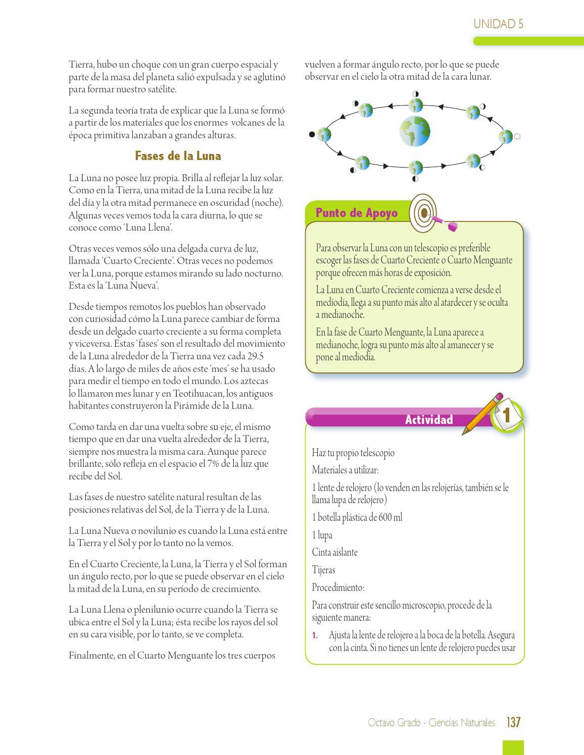 Ciencias naturales 8° by Paginas Web gratis - issuu