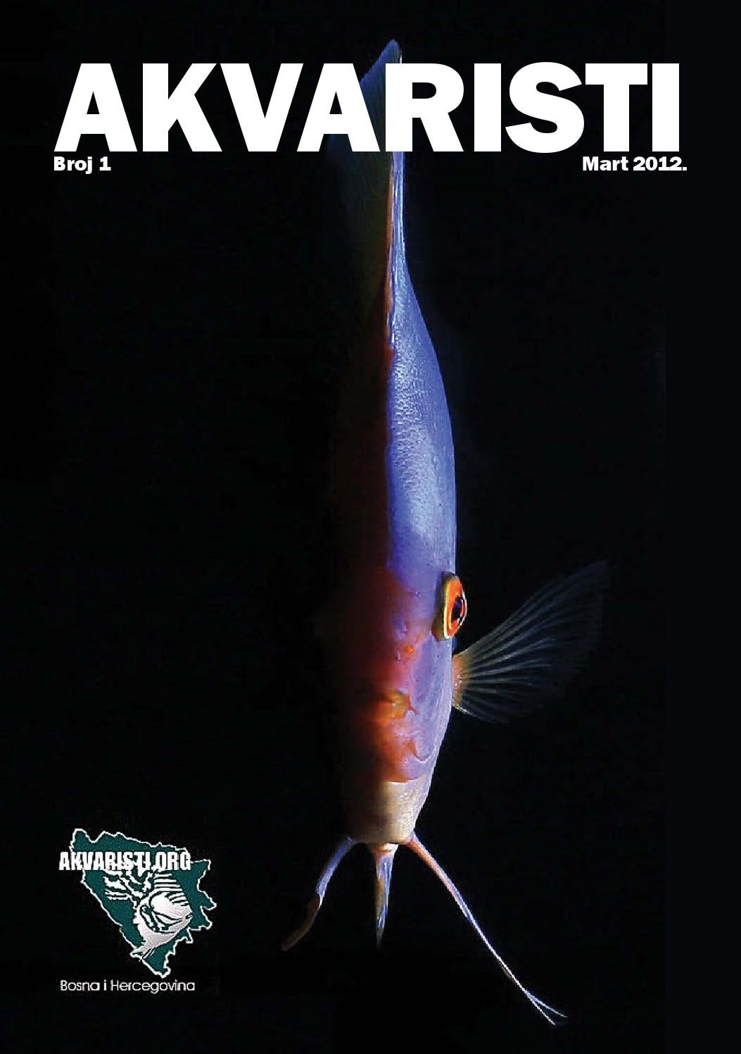 Zaljubljenik u ženku i akvarij