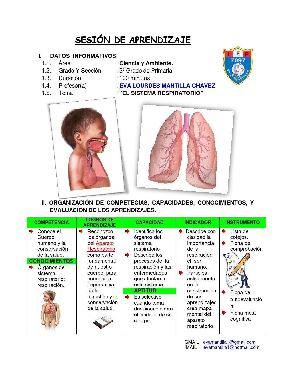 Sistema Respiratorio by EVA LOURDES MANTILLA CHAVEZ - issuu
