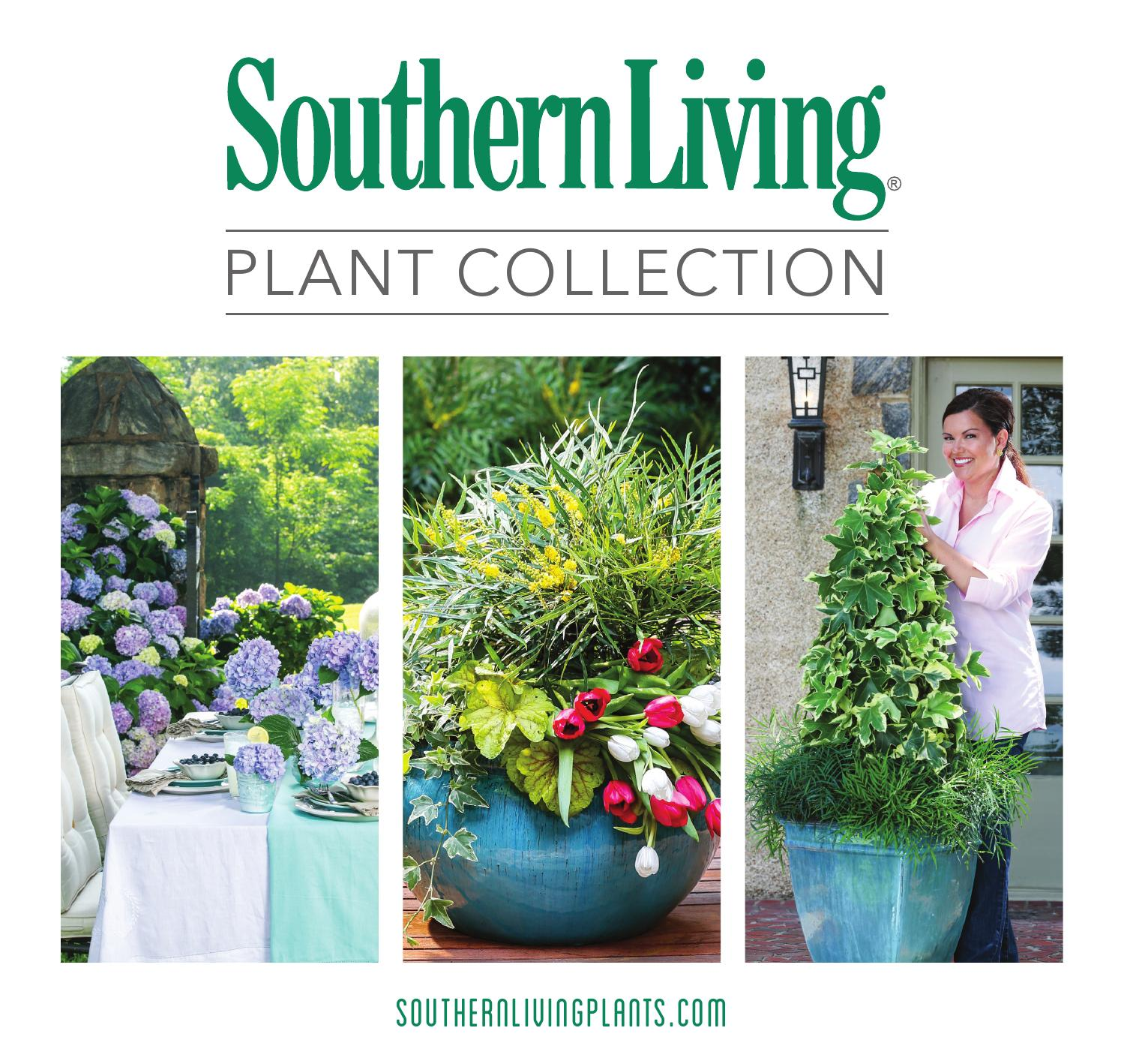 Southern living plant collection brochure 2014 by opteracreative issuu - Southern living home plans with photos collection ...