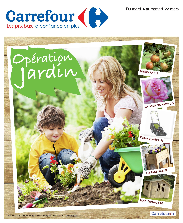 Catalogue carrefour 4 by joe monroe issuu for Catalogue jardin carrefour