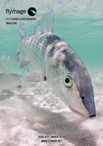 flymage fly fishing and photography magazine - issuu, Fishing Reels