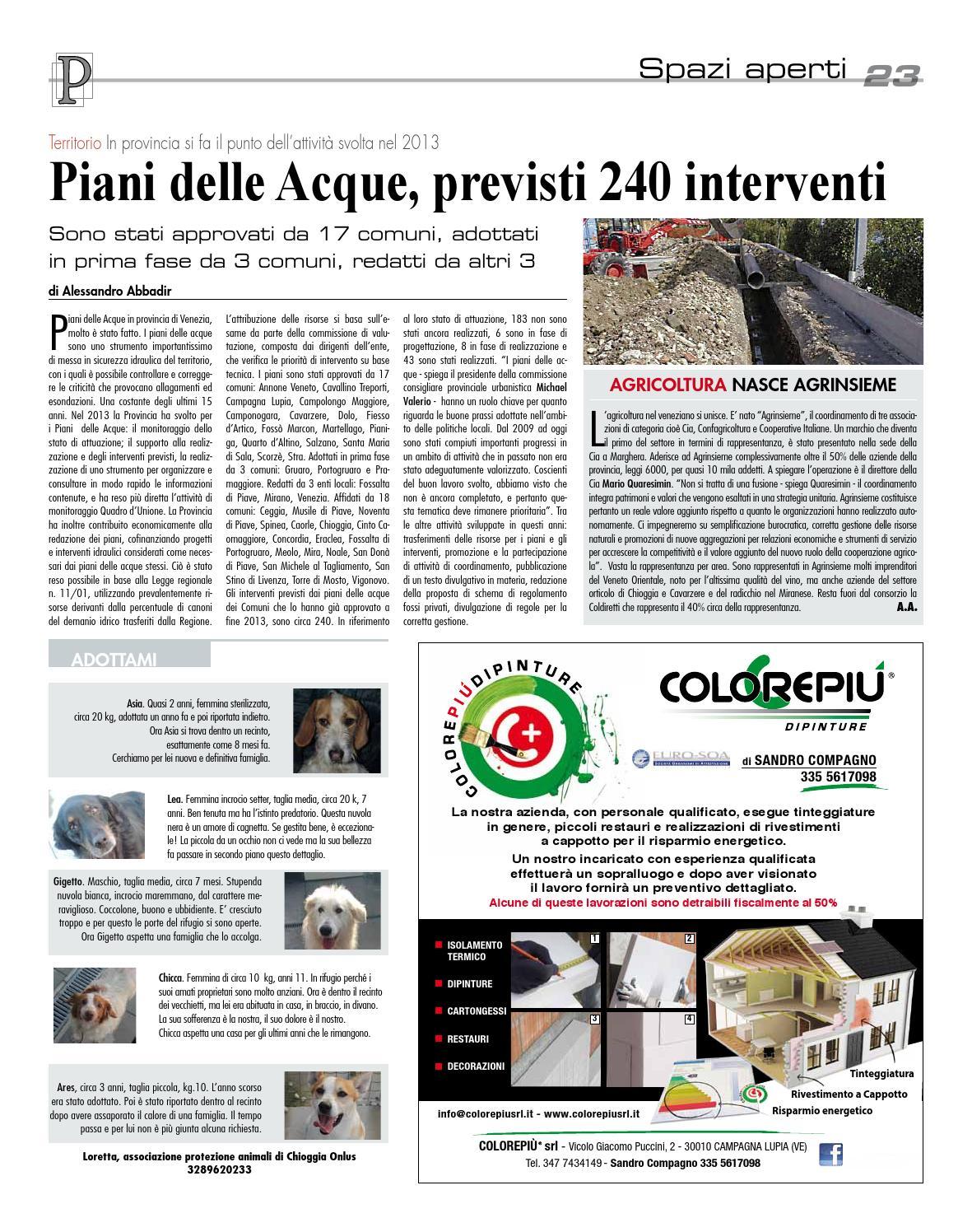 Miranese sud febb2014 n18 by LaPiazza give emotions issuu