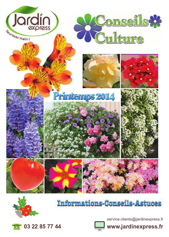Jardin Express Culture Plants by BLMA - Issuu