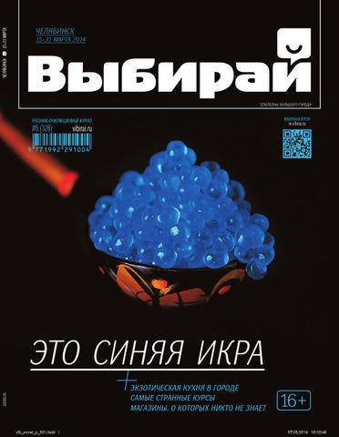 7d1432fdb452e1 Выбирай. Челябинск, №6 (328), 15 - 30 марта 2014 года by ИГ Парамон ...