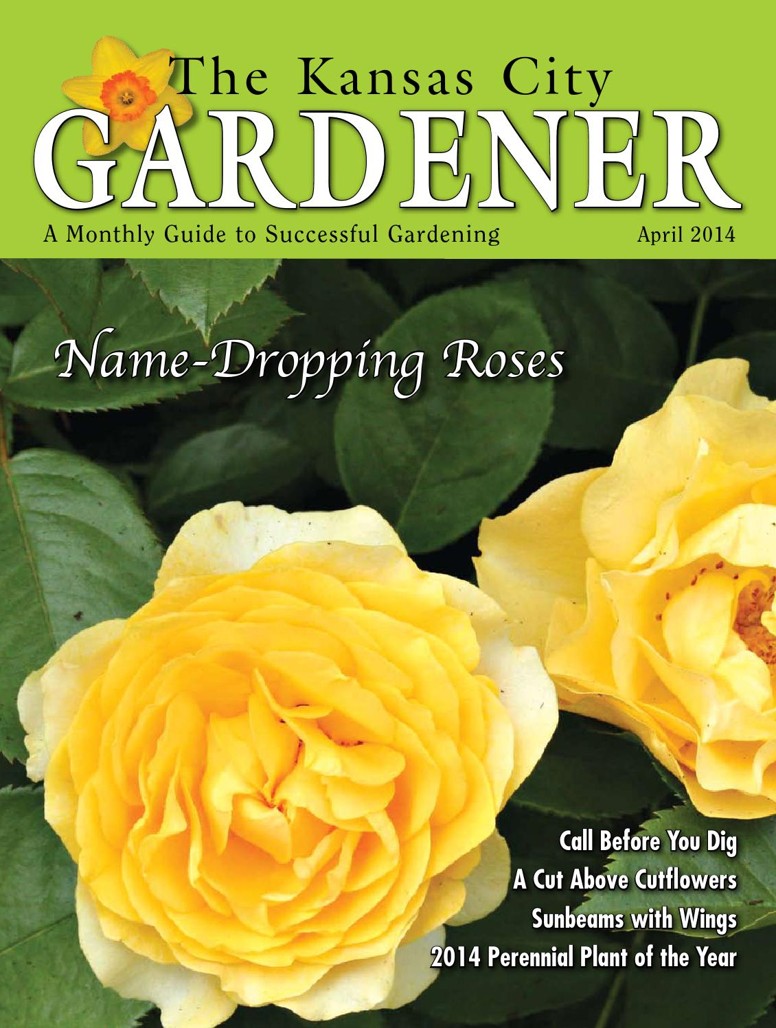 Kcg 4apr2014 By The Kansas City Gardener Issuu Rose Flower Diagram Lesson One Anatomy
