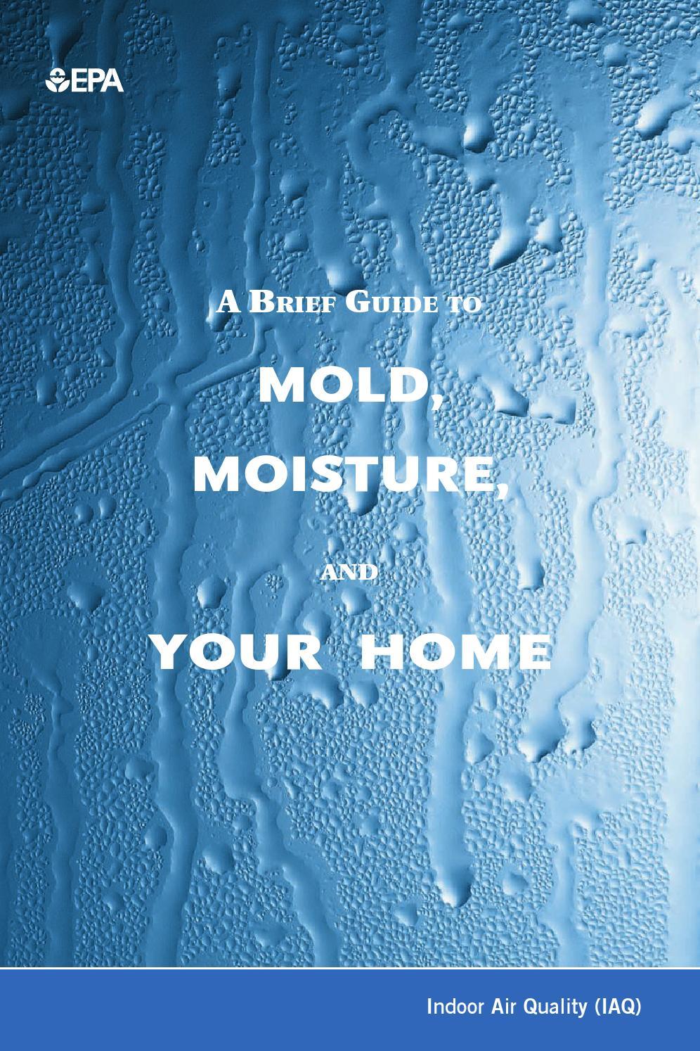 Epa Mold Amp Moisture Brochure By Kelly Dodson Issuu