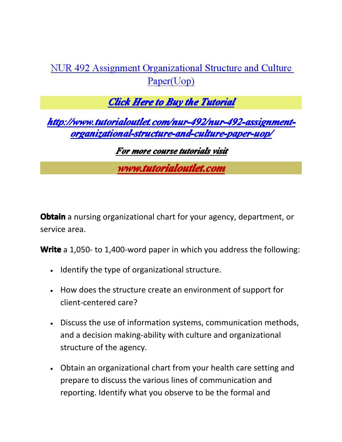 Organizational culture essay