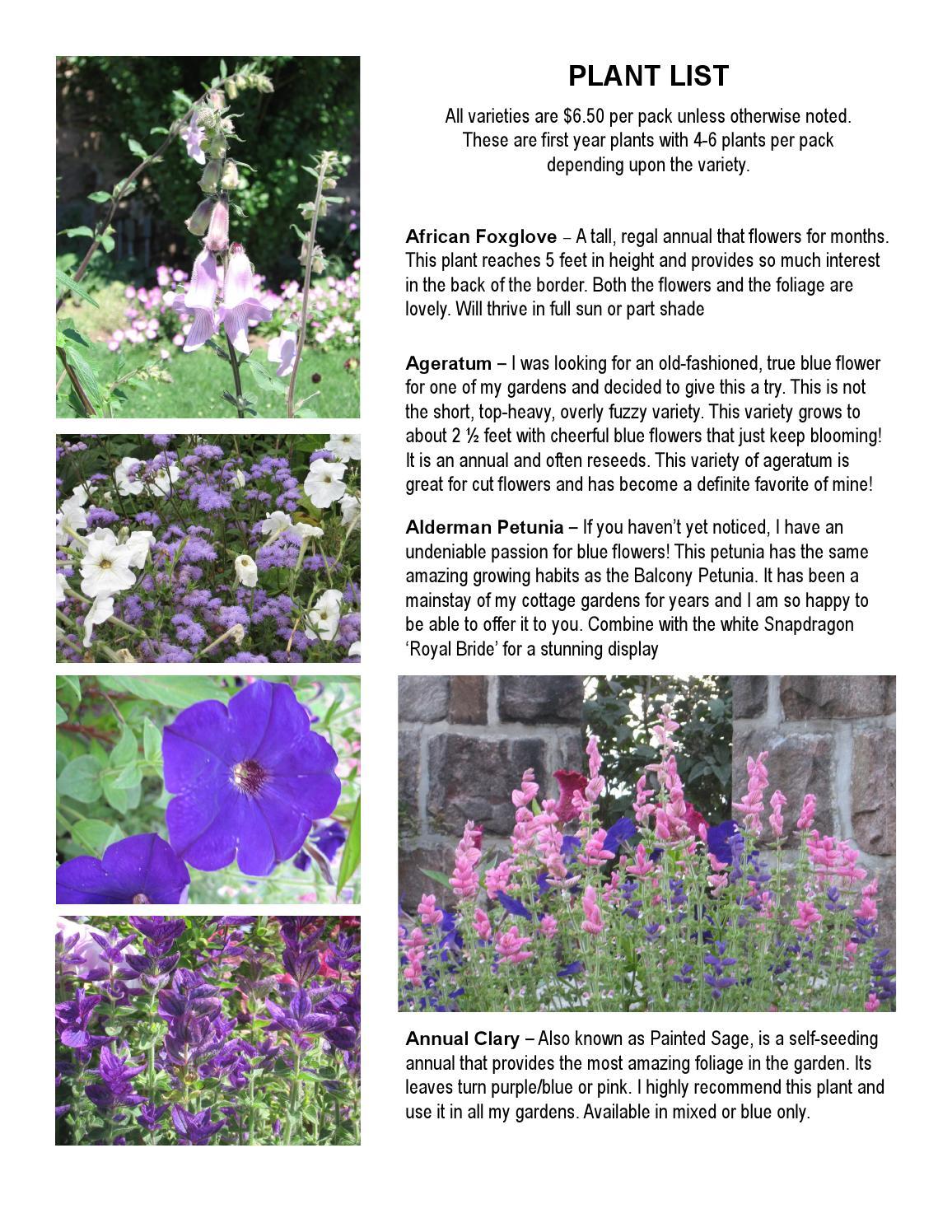 2014 plant list by kathleen murphy garden design issuu izmirmasajfo Gallery