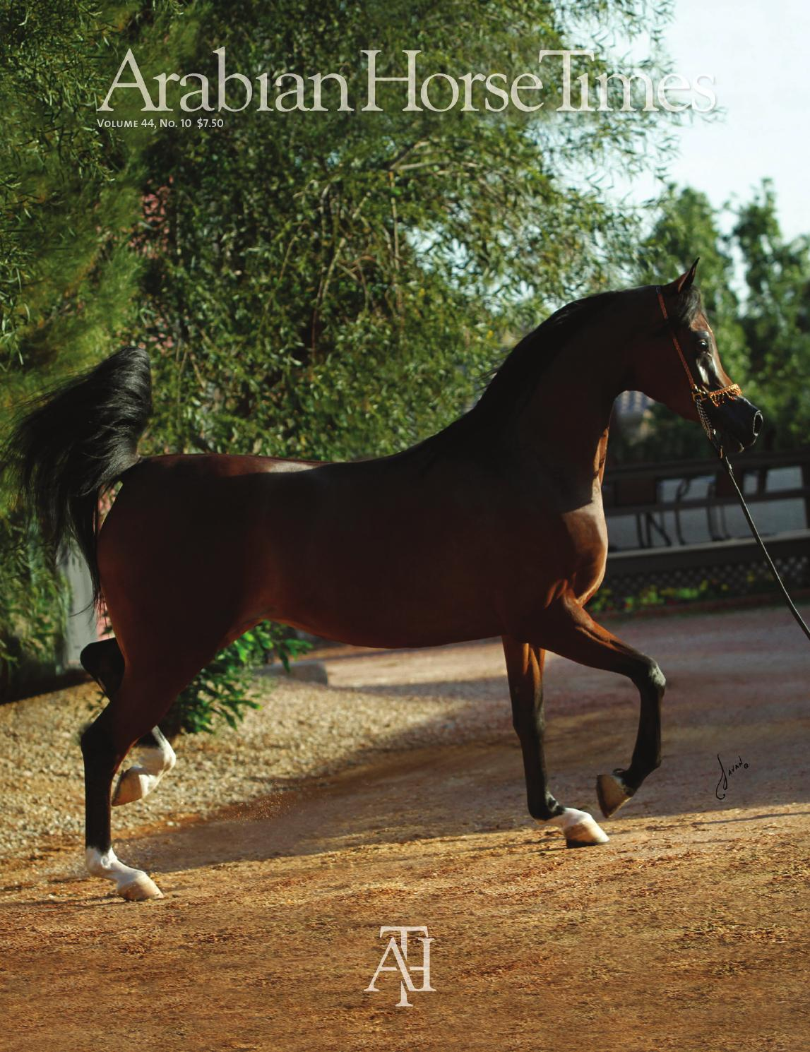 Arabian Horse Times, Volume 44 No. 10 by Arabian Horse Times - issuu